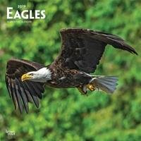Eagles 2019 Square by Inc Browntrout Publishers