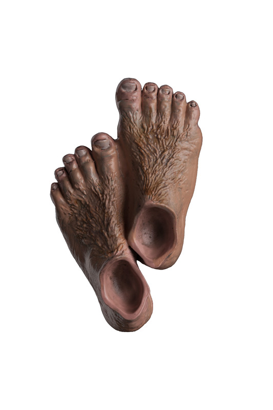Lord of the Rings: Hobbit Feet Magnet