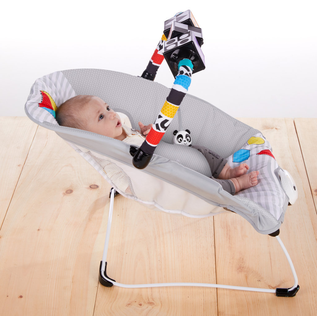 Baby Einstein: More to See High Contrast Bouncer with Vibrating Seat image