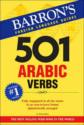 501 Arabic Verbs by Raymond P Scheindlin