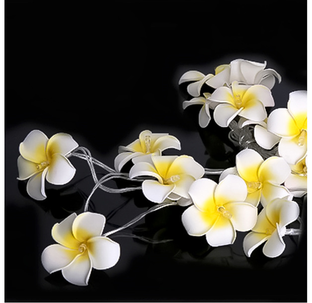 Frangipani Fairy Lights - 20 LED Lights