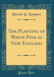 The Planting of White Pine in New England (Classic Reprint) by Harold B Kempton image
