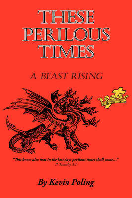 These Perilous Times by Kevin Poling image