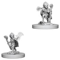 Pathfinder Deep Cuts: Unpainted Miniature Figures - Gnome Male Druid