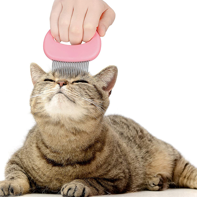 Long-Haired/ Short-Haired - Pet Comb (Pink)