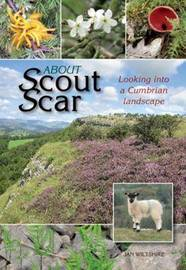 About Scout Scar by Jan Wiltshire image