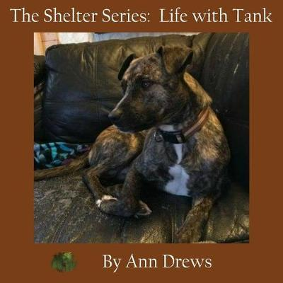 The Shelter Series by Ann Drews