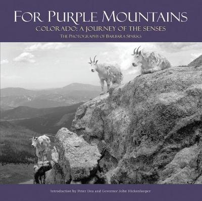 For Purple Mountains by Barbara Sparks
