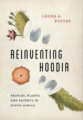 Reinventing Hoodia by Laura A Foster