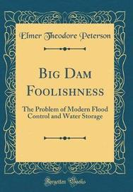 Big Dam Foolishness by Elmer Theodore Peterson image