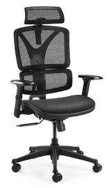 Ergolux: EX10 Ergonomic Mesh Office Chair