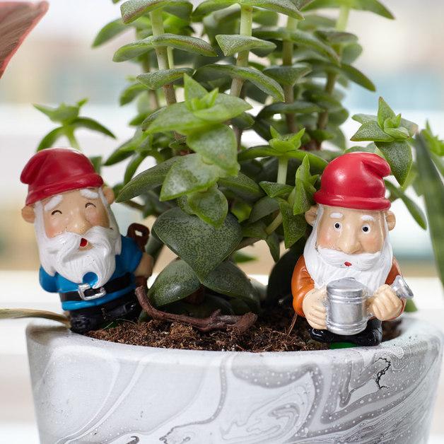 Mini Plant Pot Gnomes (Set of 4)