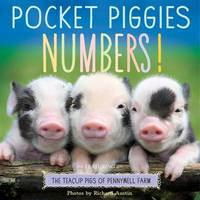 Pocket Piggies Numbers! by Workman Publishing