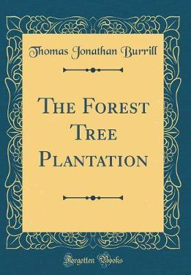 The Forest Tree Plantation (Classic Reprint) by Thomas Jonathan Burrill
