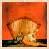 Don't Feed the Pop Monster by Broods