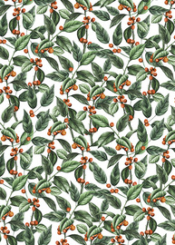 Christmas Wrap Roll - Holly (3m) image