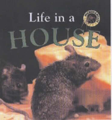 Life in a House by Clare Oliver