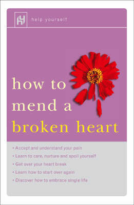How to Mend a Broken Heart by Christine Webber image