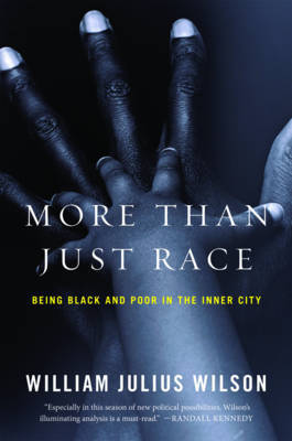 More than Just Race by William Julius Wilson image