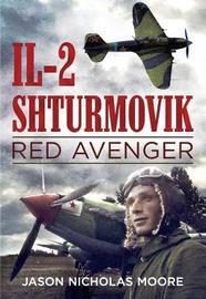 Il-2 Shturmovik by Jason Nicholas Moore
