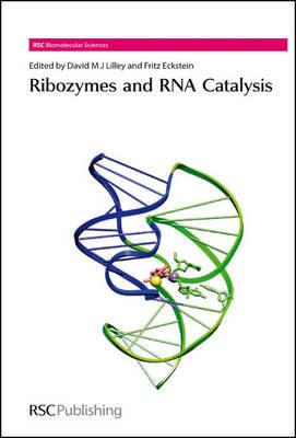 Ribozymes and RNA Catalysis image