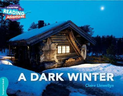 A Dark Winter Turquoise Band by Claire Llewellyn image