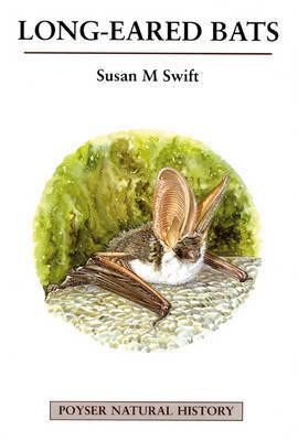 Long-eared Bats by Susan M. Swift image