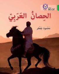 The Arabian Horse by Mahmoud Gaafar image