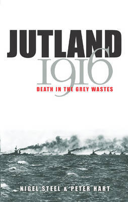 Jutland, 1916 by Peter Hart