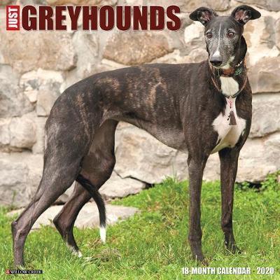 Just Greyhounds 2020 Wall Calendar (Dog Breed Calendar) by Willow Creek Press