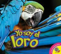 El Loro (Parrot) by Samantha Nugent