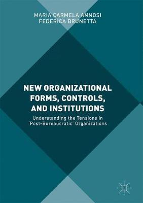 New Organizational Forms, Controls, and Institutions by Maria Carmela Annosi image