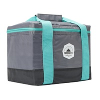 Smash: Crosscut Cooler Bag - Grey/Teal (9L)