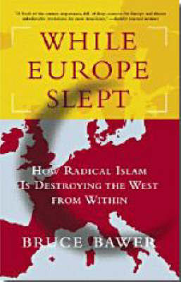 While Europe Slept by Bruce Bawer image