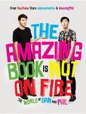 The Amazing Book Is Not on Fire: The World of Dan and Phil by Dan Howell