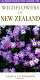 A Photographic Guide to Wildflowers of New Zealand by Geoff Brunsden