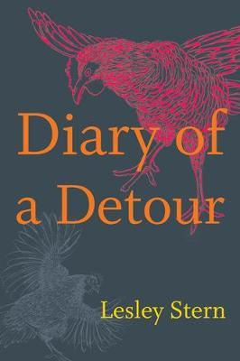 Diary of a Detour by Lesley Stern