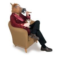Horse Head Mask