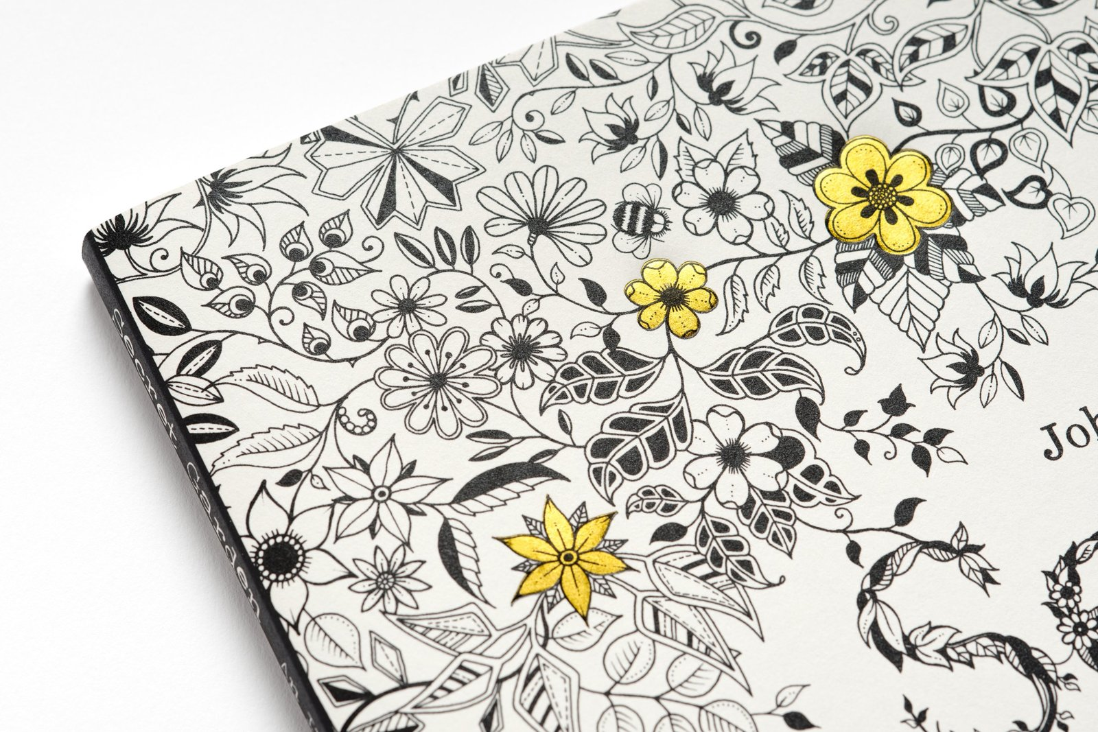 secret garden an inky treasure hunt and colouring book by johanna basford image - My Secret Garden Coloring Book