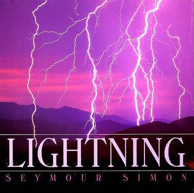 Lightning by Seymour Simon image
