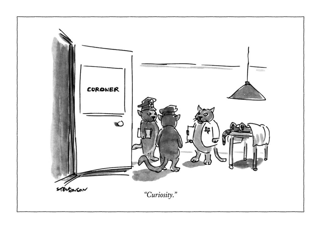 The New Yorker: Curiosity - Greeting Card image
