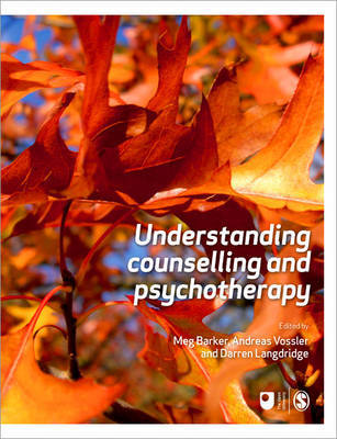 Understanding Counselling and Psychotherapy image