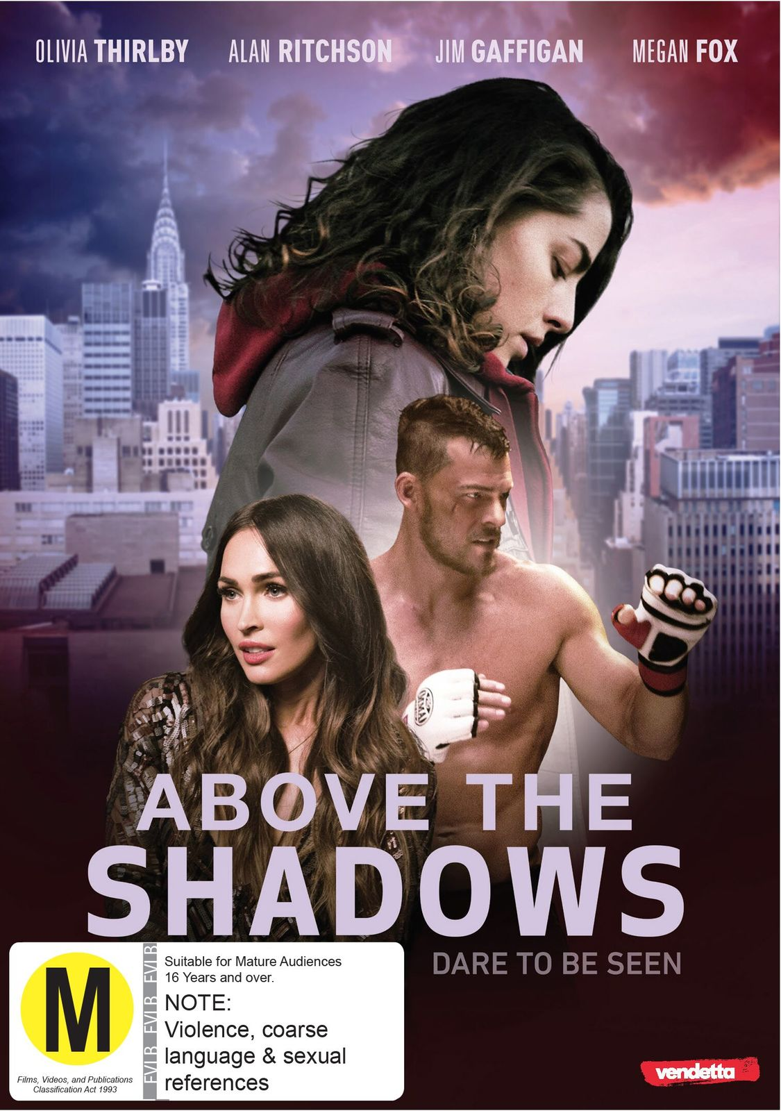 Above the Shadows on DVD image