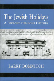 The Jewish Holidays by Larry Domnitch image