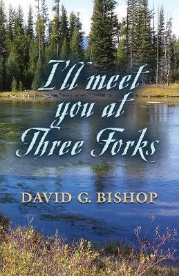 I'll Meet You at Three Forks by David G Bishop image