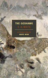 The Goshawk by Marie Winn image