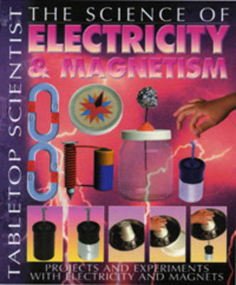Electricity and Magnetism image