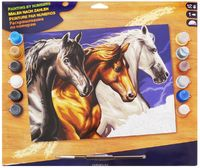 Paint by Numbers - Wild Horses image