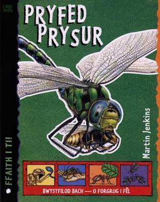 Cyfres Ffaith i Ti! Pryfed Pryser by Martin Jenkins