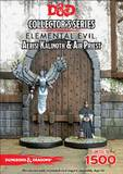 Dungeons & Dragons: Temple of Elemental Evil Aerisi Kalinoth and Priest